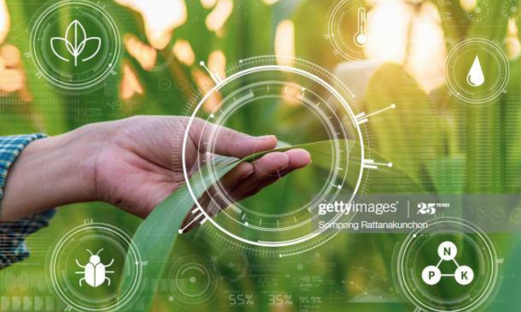 Smart Farming in 2020: How IoT sensors are creating a more efficient precision agriculture industry
